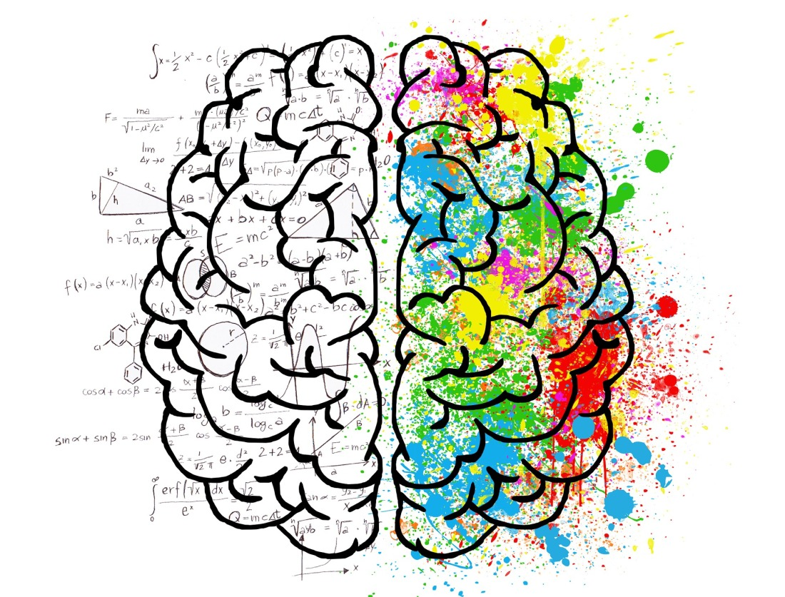 Brain. Are personality types useful?